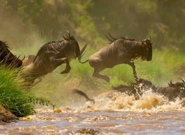 7 Days Kenya Adventure Camping Safari | Budget Camping Safari