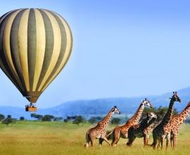 Masai Mara Joining Safari 3 Days