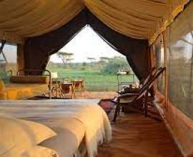 12-Day Classic Kenya & Tanzania + Zanzibar Beach Holiday